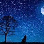 Legendy litewskie: Żelazny Wilk