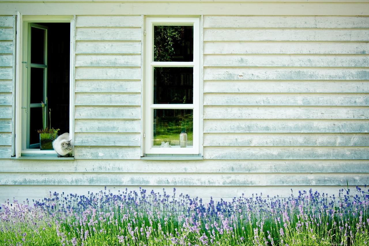 chrzciny na litwie okno